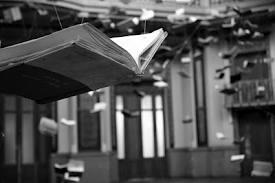 Libros que vuelan